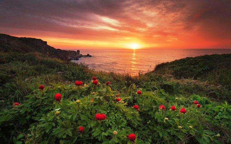 Красивый закат на побережье