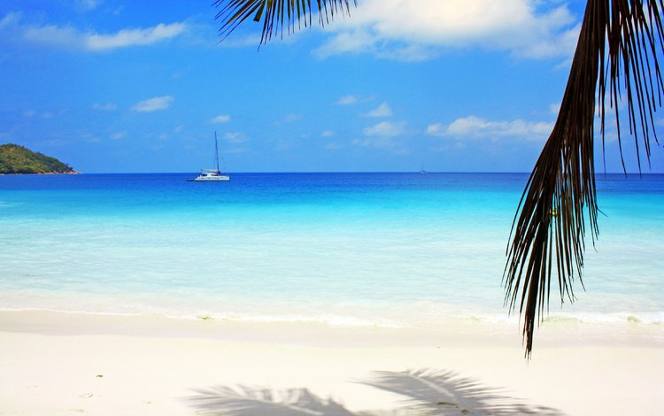 море, пляж, яхта, отдых, остров, тропики, sea, beach, yacht, stay, island, tropics