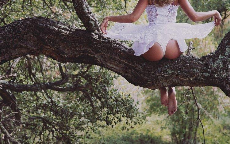 дерево, девушка, попа, tree, girl, ass