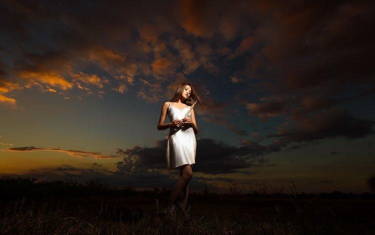 небо, облака, ночь, девушка, поле, волосы, белое платье, the sky, clouds, night, girl, field, hair, white dress
