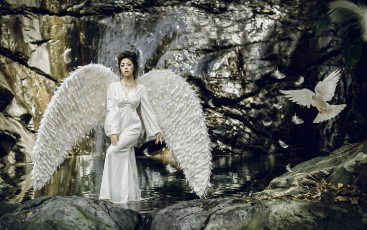 water, style, girl, dress, wings, bird, feathers, dove, asian, swan