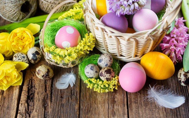 цветы, крашеные, доски, перепелиные яйца, корзина, тюльпаны, перья, пасха, яйца, гиацинты, flowers, painted, board, quail eggs, basket, tulips, feathers, easter, eggs, hyacinths