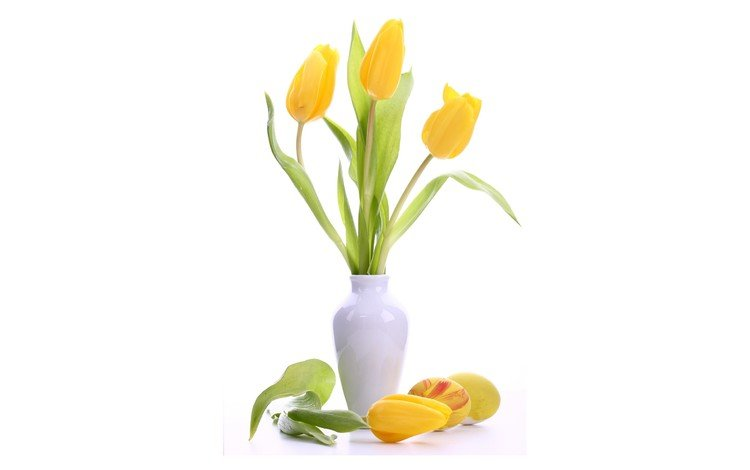 flowers, bouquet, tulips, white background, vase, easter, eggs