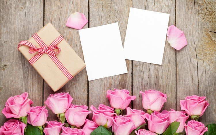 roses, petals, bouquet, gift, box, valentine's day, pink roses, cards