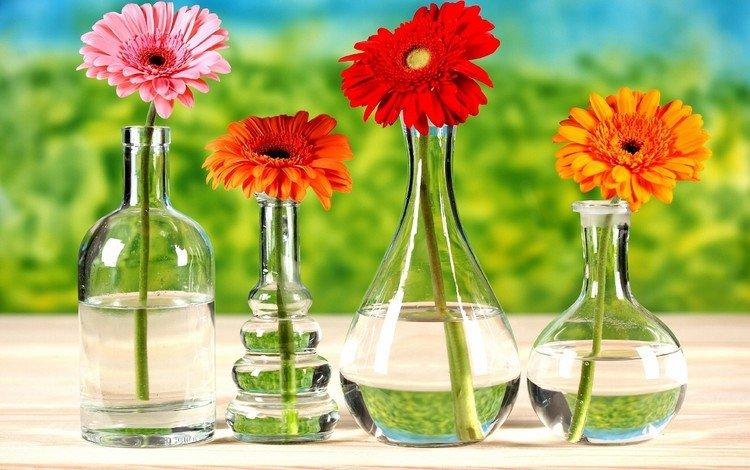 цветы, стол, бутылки, герберы, вазы, flowers, table, bottle, gerbera, vases