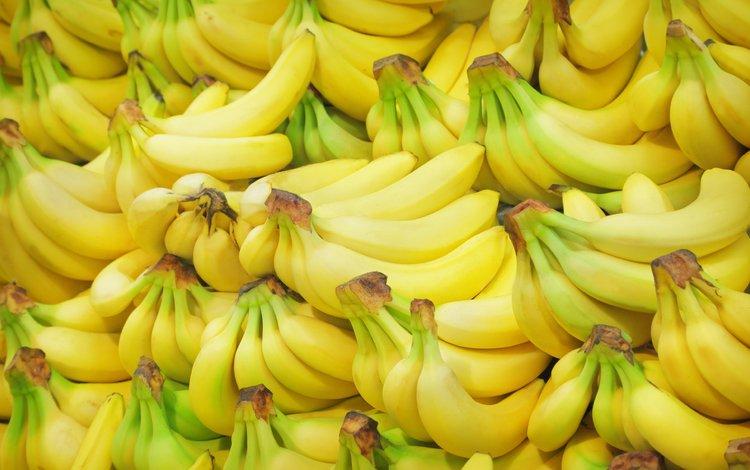 фрукты, много, плоды, бананы, fruit, a lot, bananas