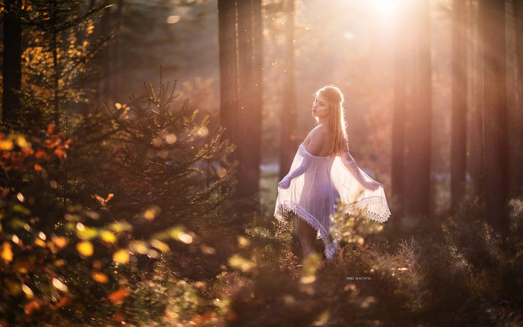 light, nature, sunset, mood, rays, autumn, model, fairy, miki macovei come with