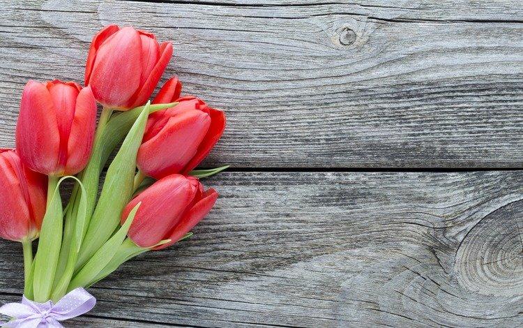 цветы, букет, тюльпаны, красные тюльпаны, flowers, bouquet, tulips, red tulips