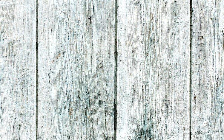 дерево, текстура, доски, белая, деревянная, tree, texture, board, white, wooden