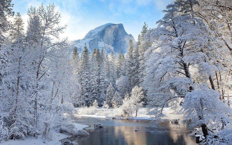 деревья, река, горы, природа, зима, пейзаж, иней, лёд, trees, river, mountains, nature, winter, landscape, frost, ice