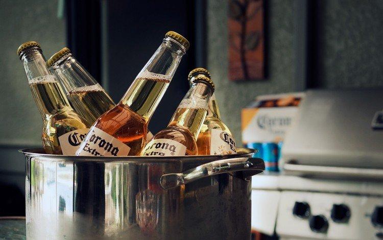 пиво, бутылки, алкоголь, кастрюля, corona, beer, bottle, alcohol, pan