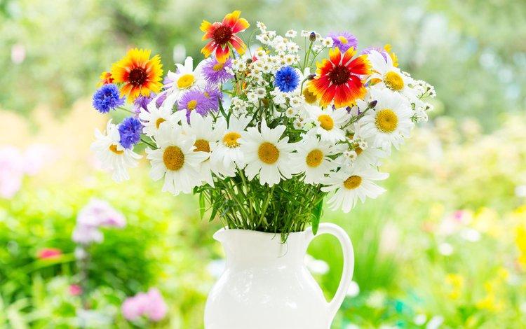 цветы, лето, ромашки, букет, flowers, summer, chamomile, bouquet
