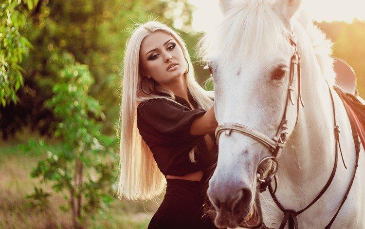 лошадь, девушка, horse, girl