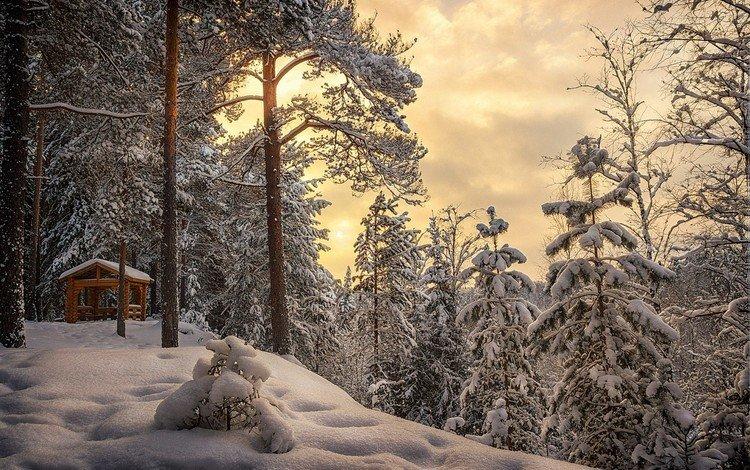 небо, облака, деревья, снег, лес, зима, беседка, сугробы, the sky, clouds, trees, snow, forest, winter, gazebo, the snow