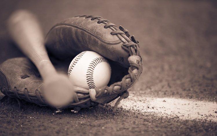 мяч, перчатка, бейсбол, бита, бейсбольный мяч, the ball, glove, baseball, bit