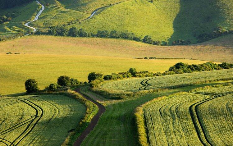 трава, ферма, деревья, alan mackenzie, холмы, пейзаж, поля, кусты, англия, долина, grass, farm, trees, hills, landscape, field, the bushes, england, valley