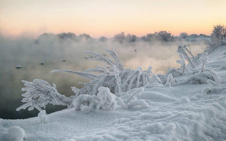 река, снег, природа, растения, зима, туман, кусты, иней, river, snow, nature, plants, winter, fog, the bushes, frost