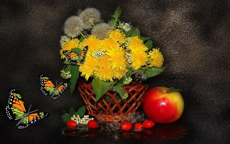 бабочка, одуванчики, натюрморт, butterfly, dandelions, still life