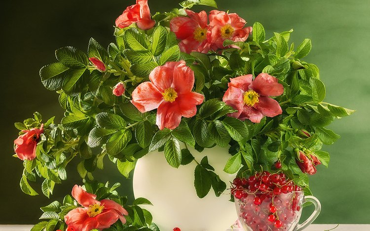 цветы, листья, ветки, шиповник, ягоды, чашка, ваза, смородина, flowers, leaves, branches, briar, berries, cup, vase, currants