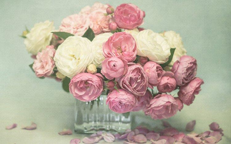 цветы, розы, лепестки, букет, розовые, белые, ваза, flowers, roses, petals, bouquet, pink, white, vase