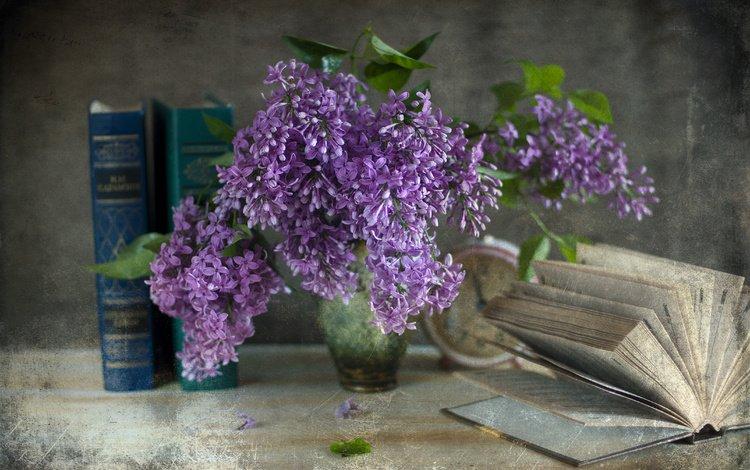 ветки, книги, часы, ваза, сирень, будильник, натюрморт, branches, books, watch, vase, lilac, alarm clock, still life