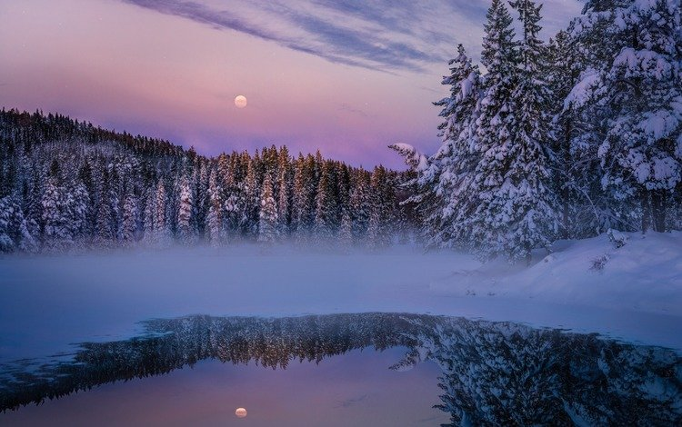 вечер, озеро, природа, лес, зима, the evening, lake, nature, forest, winter