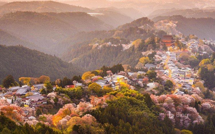 деревья, горы, цветение, город, япония, весна, сакура, yoshino, trees, mountains, flowering, the city, japan, spring, sakura