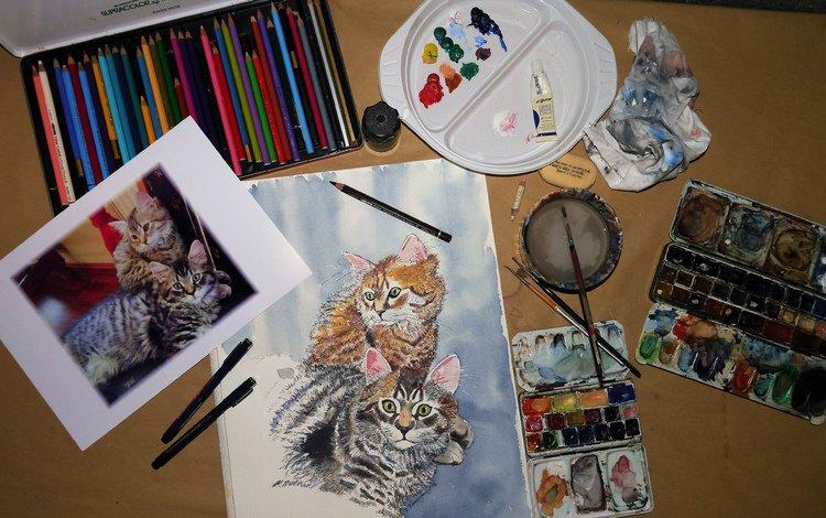 рисунок, краски, карандаши, кошки, figure, paint, pencils, cats