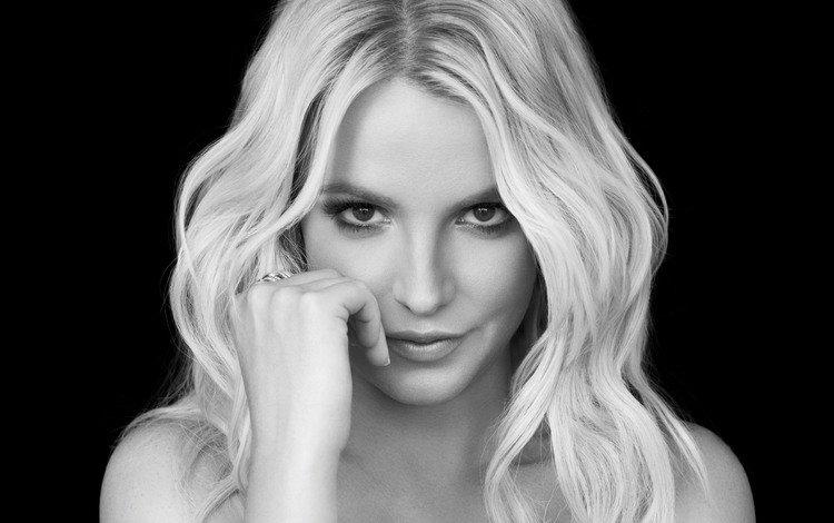 девушка, бритни спирс, блондинка, взгляд, чёрно-белое, волосы, лицо, певица, знаменитость, girl, britney spears, blonde, look, black and white, hair, face, singer, celebrity