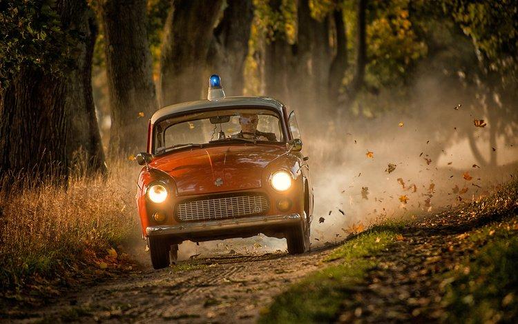 road, autumn, police, car, siren