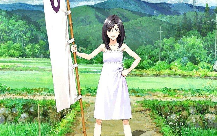 девушка, взгляд, аниме, волосы, лицо, summer wars, shinohara natsuki, girl, look, anime, hair, face