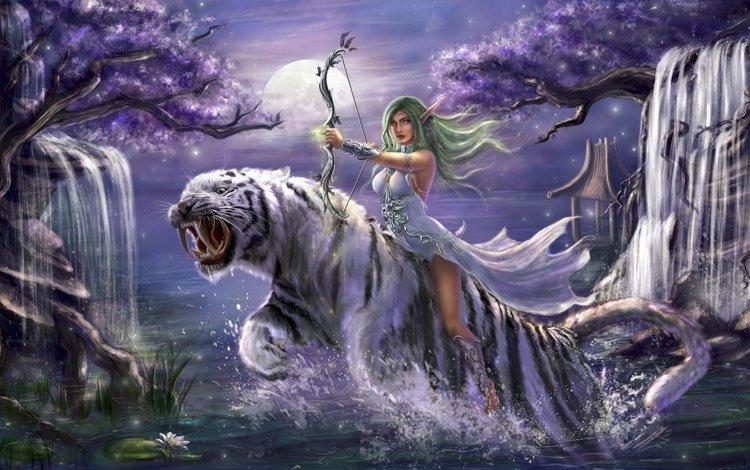 tiger, art, girl, warrior, warcraft, games, world of warcraft, wow, archer