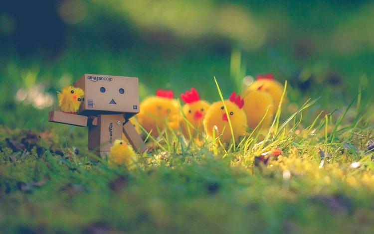 box, danbo, chickens, cardboard robot, angie m