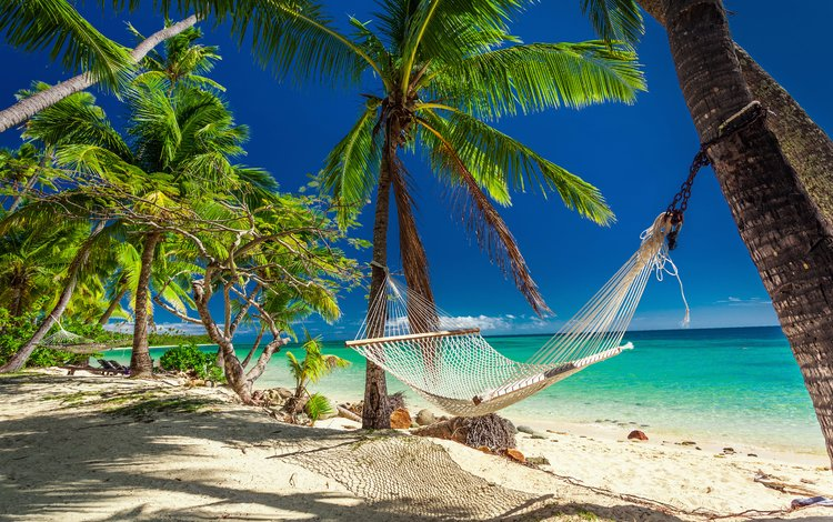 nature, landscape, sea, palm trees, stay, hammock, resort, tropics