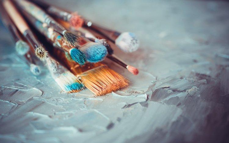 краска, кисточки, кисти, paint, brush