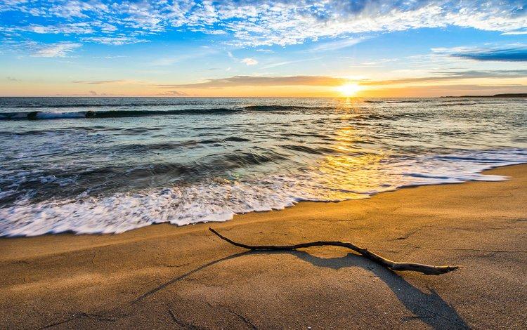 небо, пляж, облака, ветка, волны, закат, пейзаж, море, песок, the sky, beach, clouds, branch, wave, sunset, landscape, sea, sand