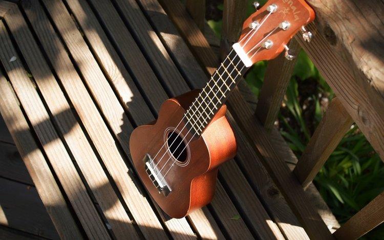background, guitar, strings, musical instrument, ukulele
