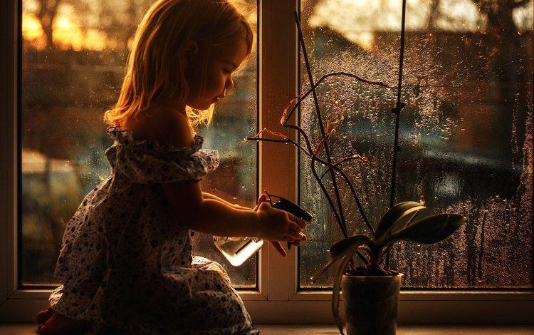 платье, окно, цветок, стекло, капли, горшок, взгляд, полив, дети, gевочка, волосы, лицо, ребенок, dress, window, flower, glass, drops, pot, look, watering, children, girl, hair, face, child