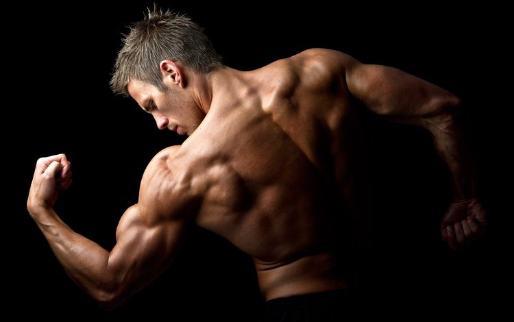 pose, back, hairstyle, muscle, bodybuilder, biceps
