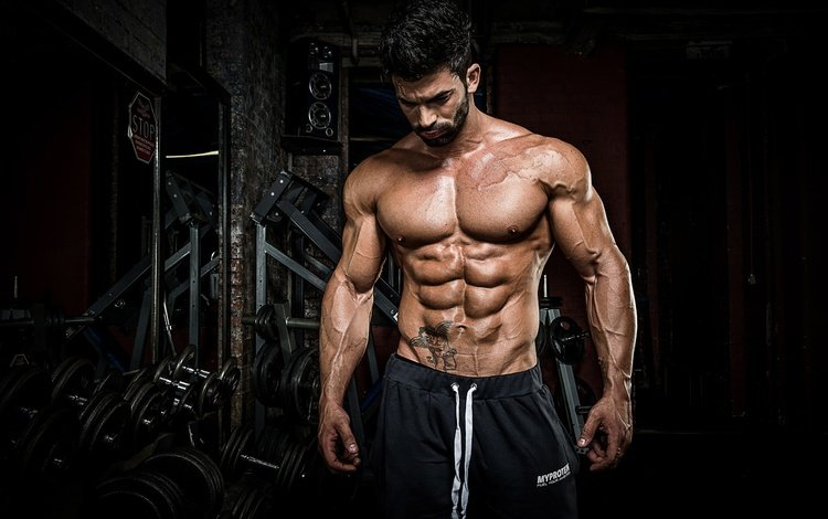 pose, male, tattoo, press, muscle, bodybuilder, abs, dumbbells, gym