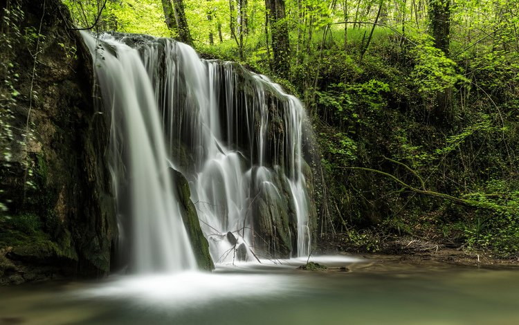 trees, river, nature, forest, landscape, waterfall, stream, jungle