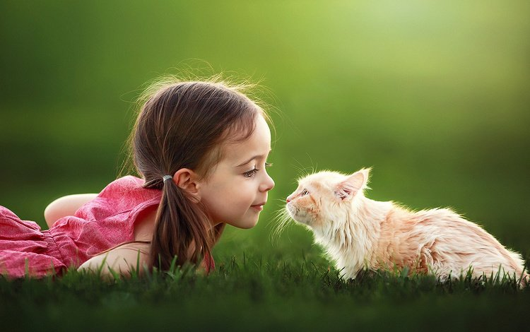 grass, mood, cat, girl, child, suzy mead