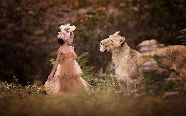 nature, dress, girl, predator, animal, outfit, lioness