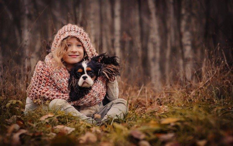 трава, друзья, деревья, капюшон, природа, шарф, листья, спаниель, настроение, осень, собака, девочка, grass, friends, trees, hood, nature, scarf, leaves, spaniel, mood, autumn, dog, girl