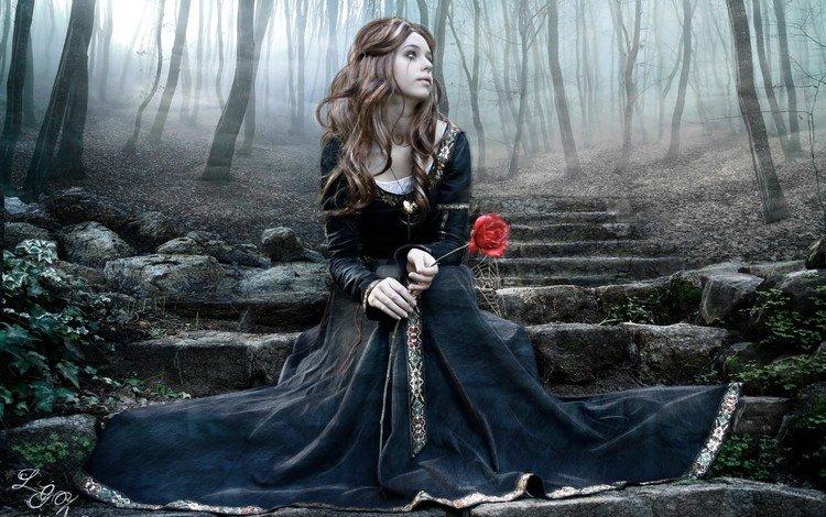 деревья, слеза, лес, лестница, ступеньки, девушка, роза, сидит, черное платье, trees, tear, forest, ladder, steps, girl, rose, sitting, black dress