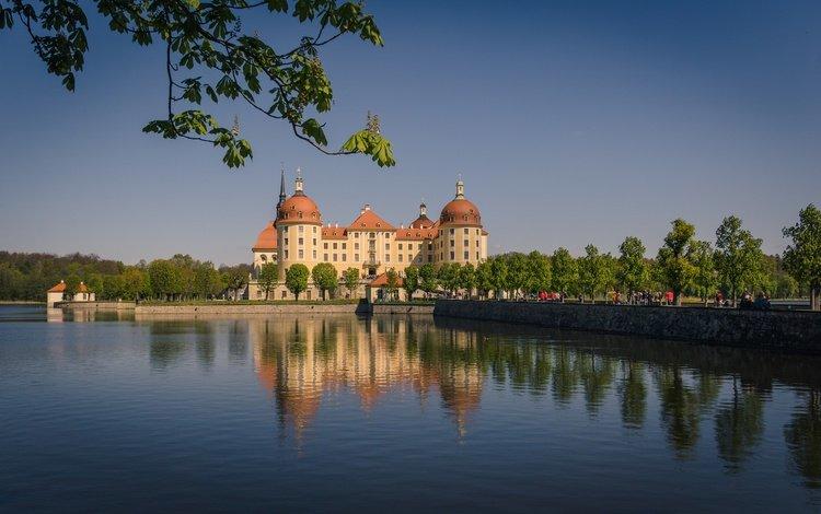 вода, моритцбург, отражение, ветки, замок, германия, саксония, морицбург, замок морицбург, water, reflection, branches, castle, germany, saxony, moritzburg, moritzburg castle