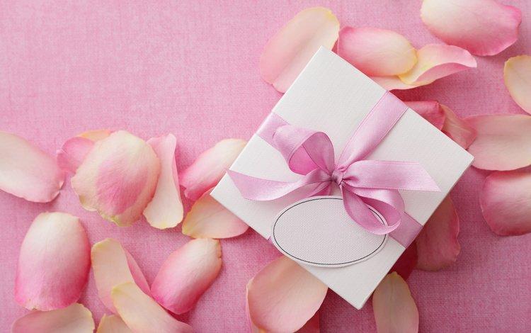 petals, gift, valentine's day, 14 feb