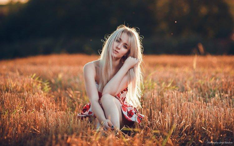 girl, dress, blonde, field, look, model, sitting, sergio banderas
