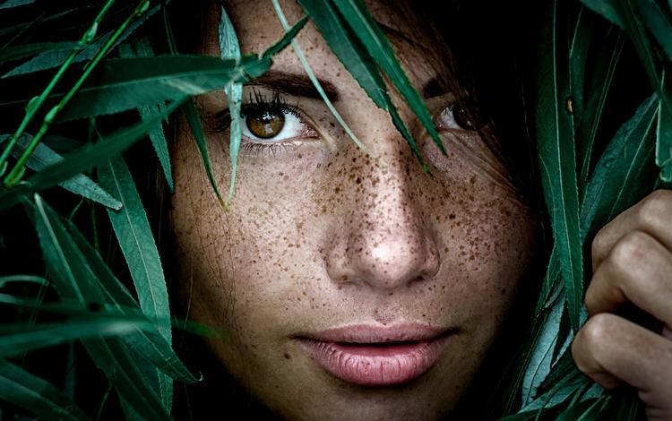 leaves, girl, portrait, face, freckles, alina, alina batrak, yuri leo