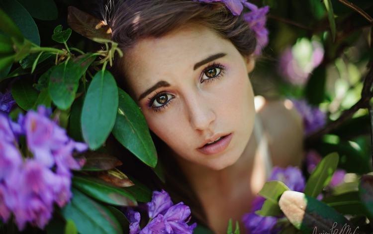 цветы, jessica larue mccann, листья, девушка, взгляд, модель, волосы, лицо, коричневые глаза, flowers, leaves, girl, look, model, hair, face, brown eyes